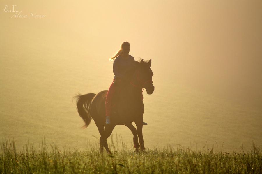 Reiten als Luxus - für das Pferd genauso wie für den Menschen!