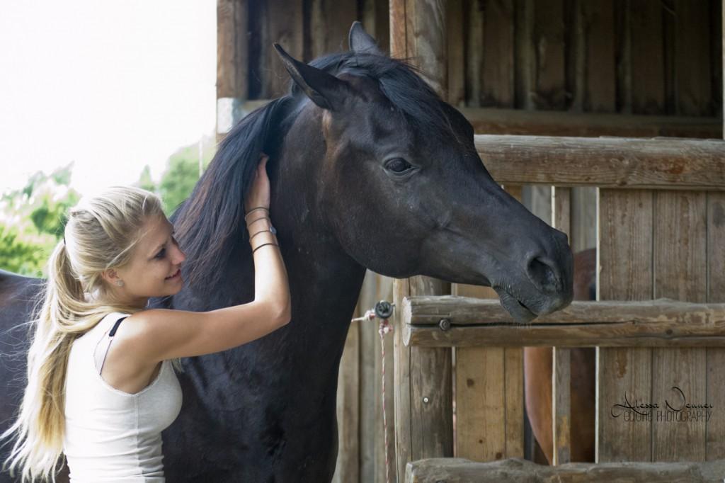 Bei der Desensibilisierung bringe ich dem Pferd im Grunde keine neue Verhaltensweise bei - ich lerne ihm im Gegensatz dazu, eine Verhaltensweise zu unterdrücken.