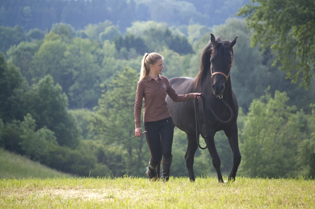 Möchte ich Aufmerksamkeit von meinem Pferd bekommen, muss ich diese erstmal bei mir selbst suchen.