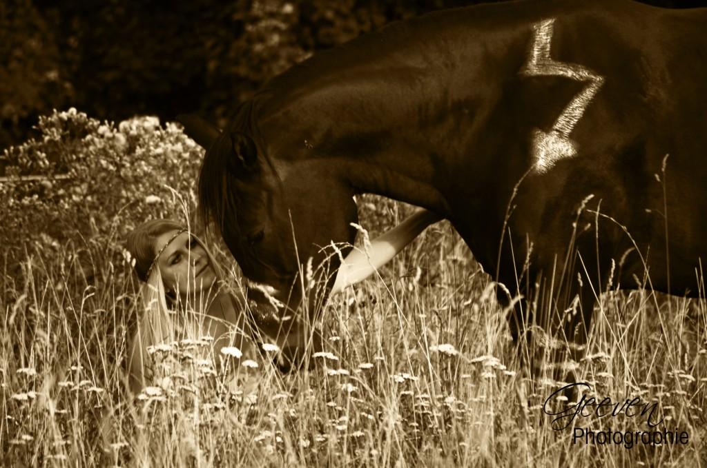 Der entscheidende Faktor, der unsere heutigen Pferde von ihren Vorfahren unterscheidet: Der Mensch, der in das System eingreift.