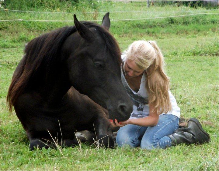 Die Pferde müssen Vertrauen in uns finden - doch gilt das anders herum nicht auch genauso?