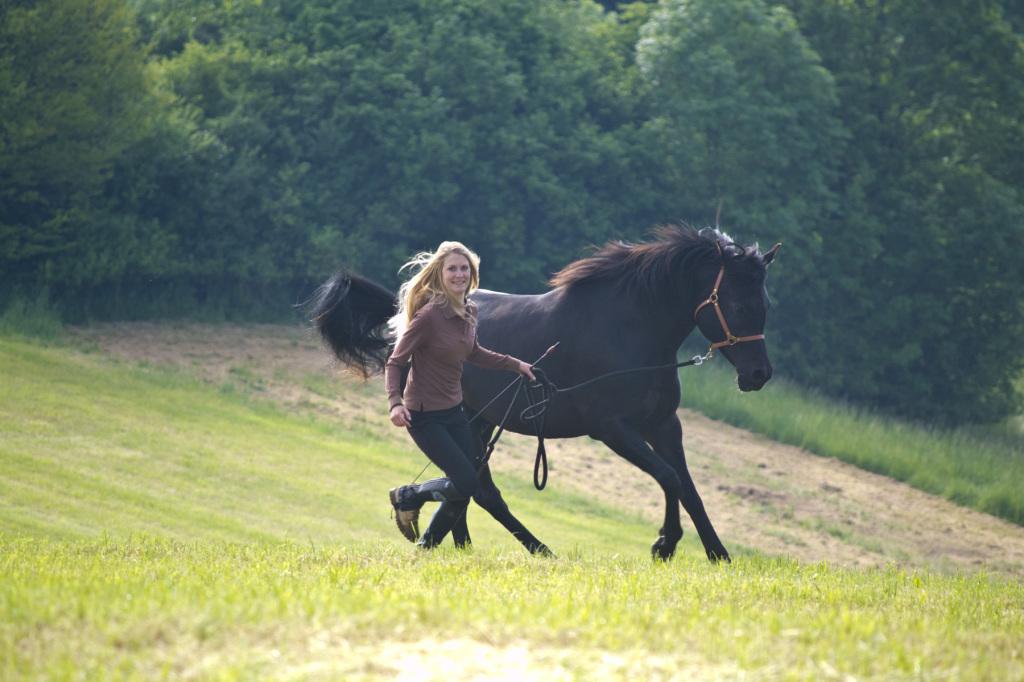 Ein motiviertes Pferd, das mit Freude und Spaß dabei ist - das ist für jeden von uns erreichbar!
