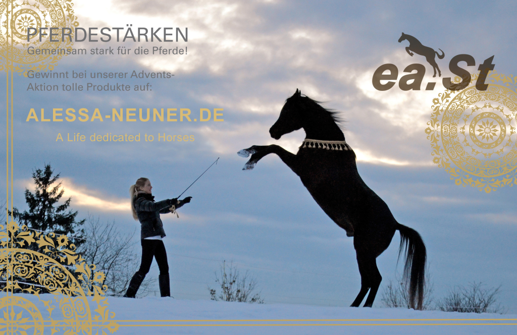 east-adventskalender-