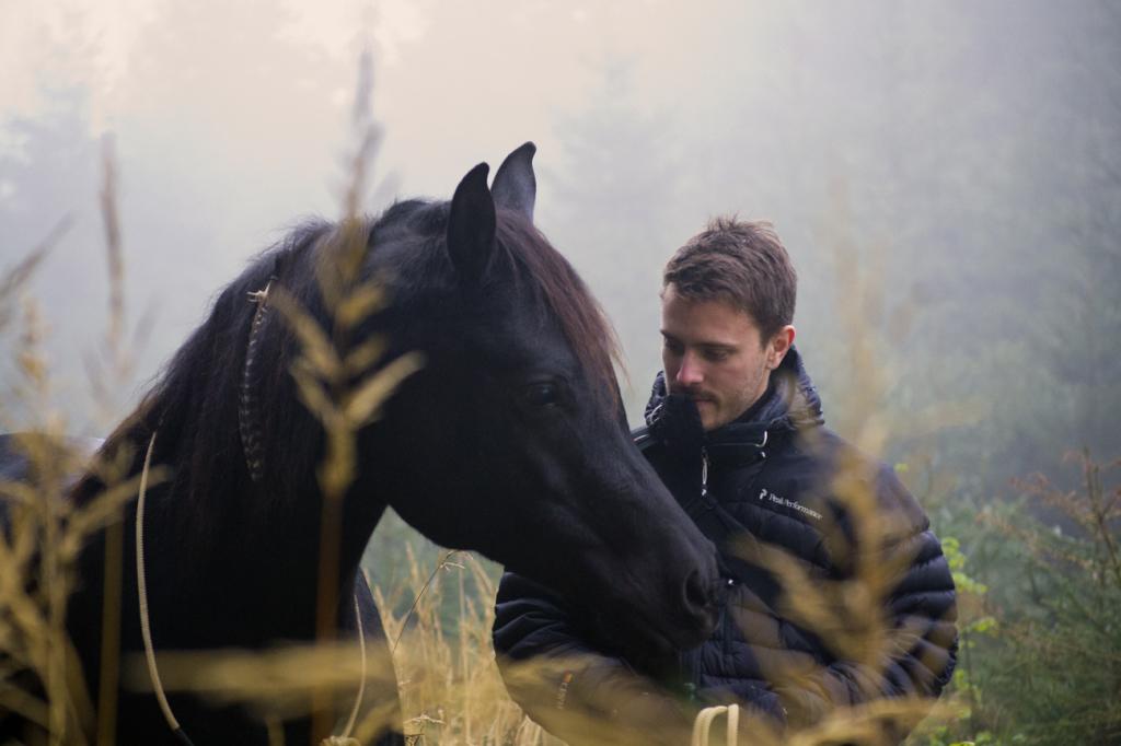 """""""Was möchtest du mir sagen?"""" Pferde sind so gut im Zuhören, dass wir manchmal vergessen, was sie alles hören..."""