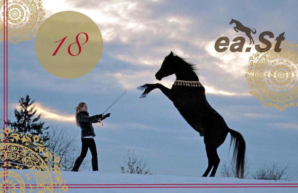 east-adventskalender_tag18