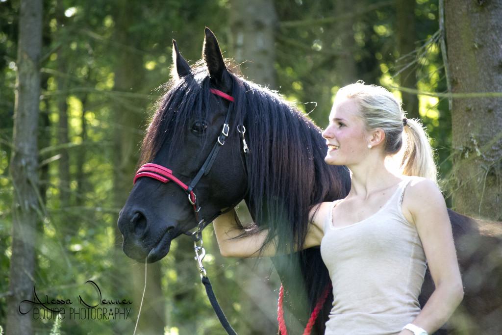 """Letztendlich sind Hengste auch """"nur"""" Pferde!"""