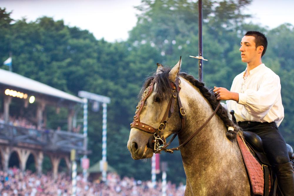 Pferd und Reiter in gespannter Konzentration vereint.