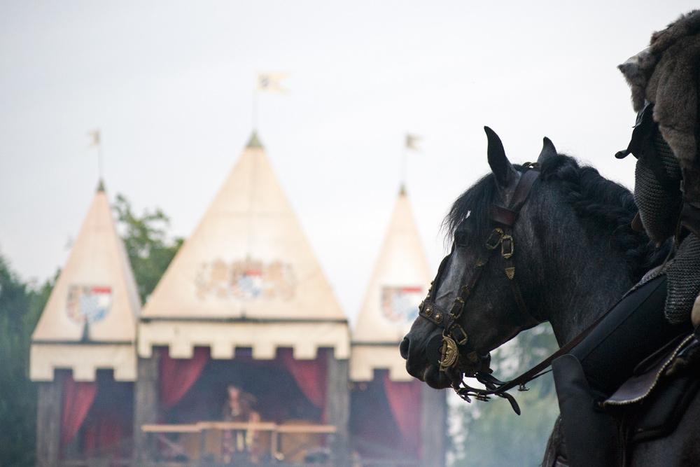 Wundervolle Pferde vor spektakulärer Kulisse. Es scheint, als hätten nicht nur die Zuschauer ihren Spaß. Auch die Pferde sind mit Feuereifer dabei.