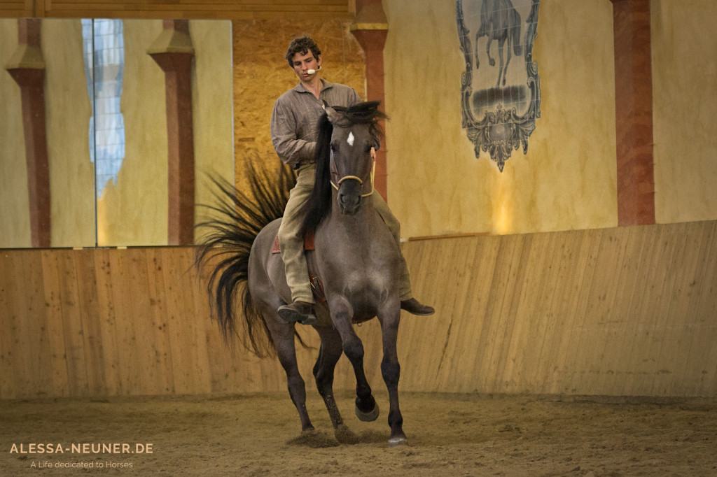 "Arien Aguilar und Kiger-Mustang Hengst ""Sunny"""