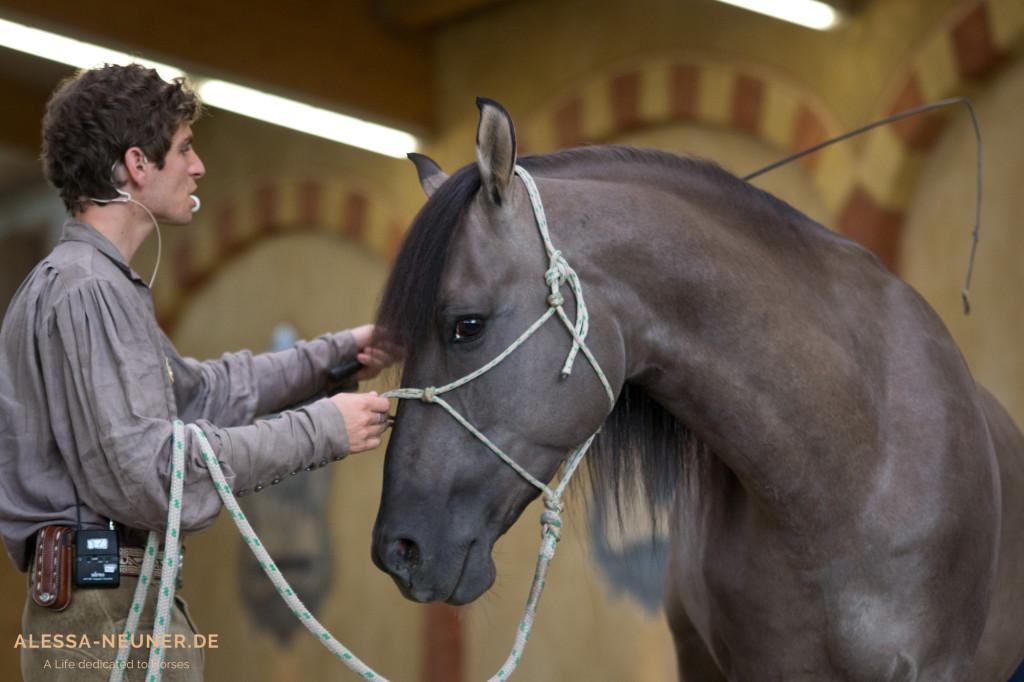 Das Herz der Veranstaltung: Arien Aguilar in Kommunikation mit uns und seinem schönen Mustang