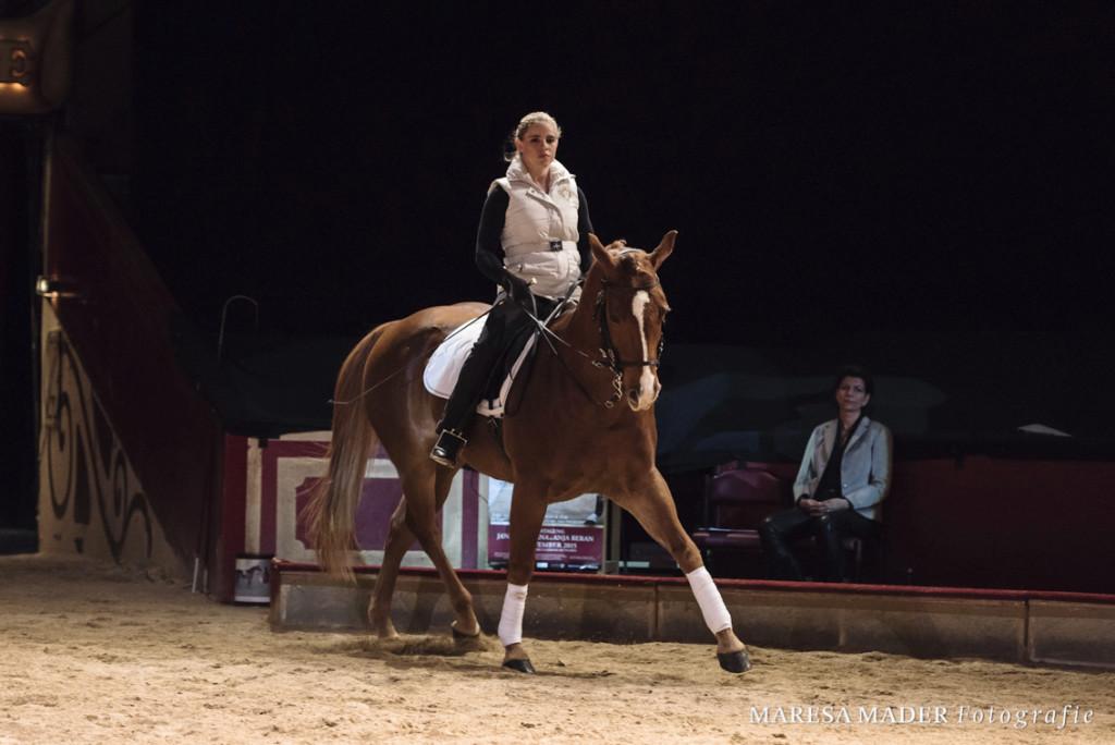 Auch ein Westernpferd kann raumgreifende, schwungvolle Gänge und eine dynamische Präsenz entwickeln.