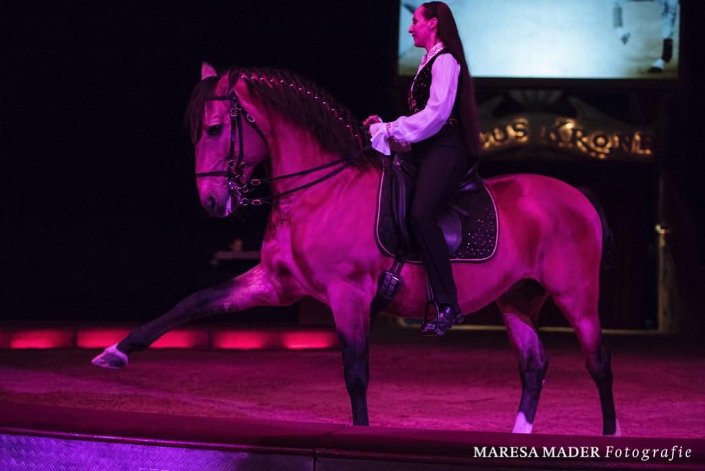 """Das einzelne Pferd als Individuum betrachten und gemeinsam mit ihm einen ganz eigenen Weg gehen - das ist es durchaus, was man unter """"klassisch"""" verstehen kann."""