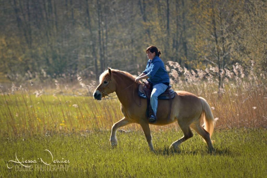 Wo die Motivation am Reitplatz fehlt, tauen die Pferde im Gelände oft auf - und werden zum Hingucker!