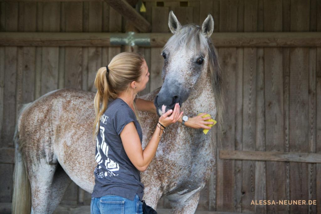 Wie fühlt sich das an? Die Bedürfnisse des Pferdes vor unsere Ziele zu stellen, kostet Mut. Und erntet Respekt und Einsatzbereitschaft.