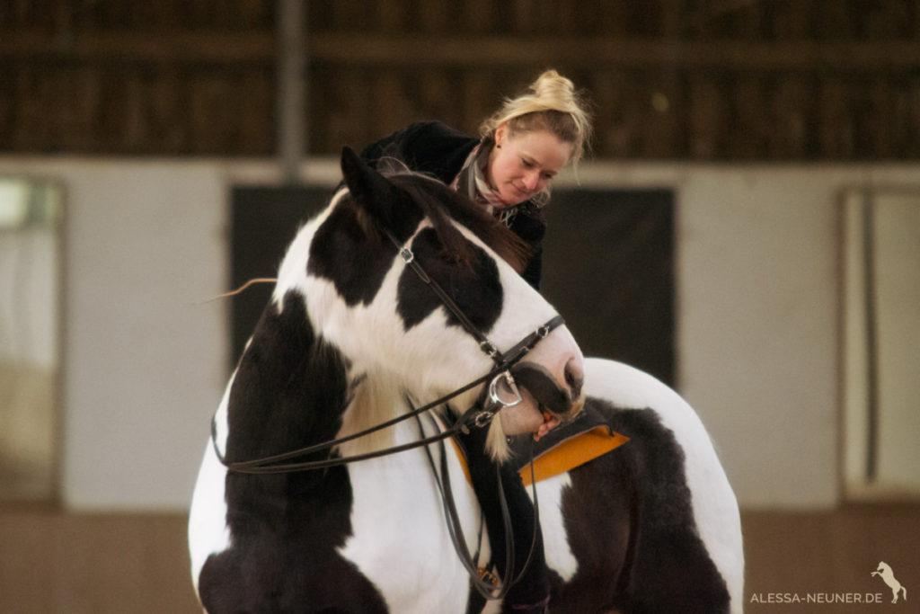 Futterlob wie jedes andere unserer Werkzeuge kann, sinnvoll eingesetzt, helfen das Pferd in seelisches und körperliches Gleichgewicht zu bringen.