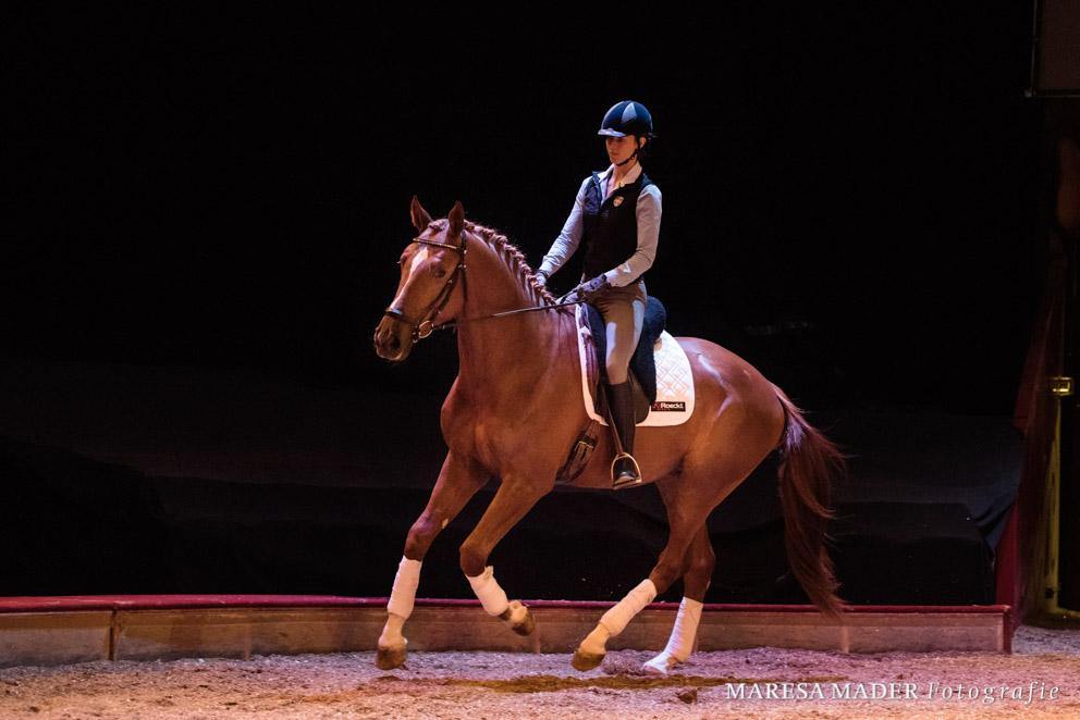 Jedes Pferd sollte das Recht auf eine Kindheit haben und frühestens ab 3 Jahren unter dem Reiter laufen.